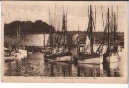 CONCARNEAU - Thonniers Dans Le Port  (bateaux) - Concarneau