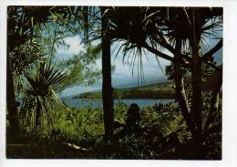 REF 129 : CPSM Ile De La Réunion Région De Saint St Joseph - Autres