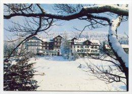 GERMANY - AK 164833 Bühl (Schwarzwald) - Plättig-Hotel 800 M - Bühl
