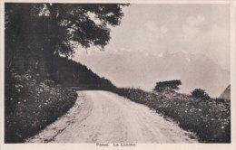 Panex, La Lanche (18831) - VD Vaud