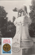 ORL CONGRESSUM, THE WOLF WITH CUBS, CM, MAXICARD, CARTES MAXIMUM, 1984, ROMANIA - Médecine