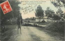 Réf : B -13-2745  : Berger   Landais Gardant Ses Moutons - France