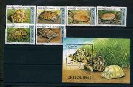 1996 Togo, Tartarughe 6 Valori + Foglietto - Turtles