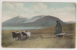 Novaya Zemlja.Seal Transporting. - Rusia