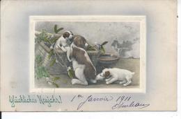 CHIENNE Et Ses Chiots - Illustrateur VK VIENNE - 5065 - Vienne