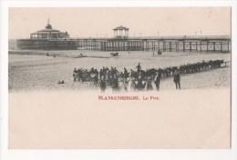 BELGIQUE - BLANKENBERGHE - Le Pier - Stationnement Des ânes - Blankenberge