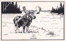 AS: T. M. Shortt, Moose, Toronto, Ontario, Canada, 1940-1960s - Autres