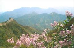 CPM - CHINA - The Lilacs Of The Great Wall (Beijing Post Office) - Chine
