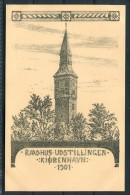 1901 Denmark Fra Raadhus Udstillingen Copenhagen Exhibition Postcard - Exhibitions