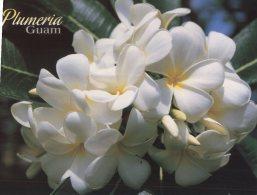 (876) Guam - Flowers Plumeria & Hibiscus - Guam