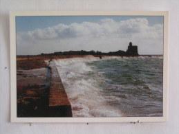 St Vaast La Hougue - Ile De Tatihou - Grande Marée à Tatihou - Saint Vaast La Hougue