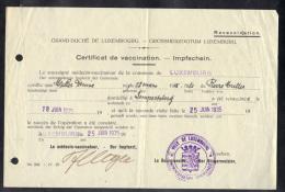 LUXEMBOURG 1935, CERTIFICAT DE VACCINATION. (3VD89) - Documents Historiques