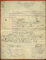 MILITARIA - 1929 Demande Du Certificat Provisoire De La Carte Du Combattant 1914 1918 - Mairie De MER 41 - Documentos Antiguos