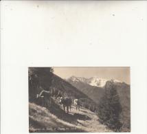 PONTE DI LEGNO -DINTORNI VG 1943 AUTENTICA 100% - Brescia