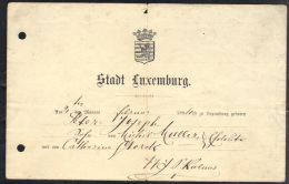 LUXEMBOURG 1894. (3VD46) - Documents Historiques