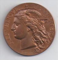 SEINE ET MARNE - MELUN - 1887 - Concours Régional Agricole - Espèce Bovine - France