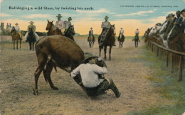 ( CPA ÉTATS UNIS )  CHEYENNE  /  WYOMING  /  Bulldoging A Wild Steer, By Twisting His Neck - - Cheyenne