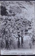 NOUVELLES HEBRIDES ILE PENTECOTE 1949 - Malaysia