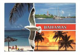 E2627 Bahamas - Uccelli Oiseux Birds - Barche Boats Bateaux Yacht / Non Viaggiata - Bahamas