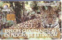 TARJETA DE GUATEMALA DE UN JAGUAR - Guatemala