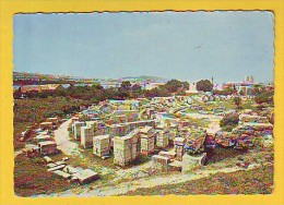 Postcard - Solin     (V 18993) - Croatie