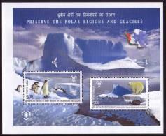 INDIA 2009, IPY International Polar Year - Preserve The Polar Regions And Glaciers Block** - Preservare Le Regioni Polari E Ghiacciai