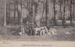 ¤¤   Forêt Du GAVRE -  Relais De Chiens - Meute De Chiens   ¤¤ - Le Gavre