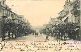 Tchequie -ref 57- Franzensbad  - - Tchéquie