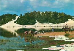 CPM - BRASIL - Turistico - Salvador - Bahia - Lagôa Do Abaeté (Mercator, 31) - Salvador De Bahia