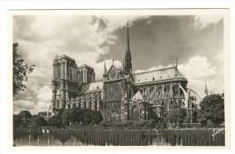 Paris - Notre-Dame - Et Le Square De L'Archeveche - Editor: D'Art Yvon - Notre-Dame De Paris