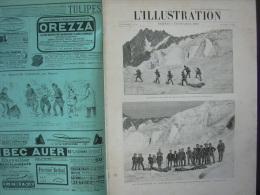 L'ILLUSTRATION 2741 CATASTROPHE MONT BLANC/ CARTES DES GRANDES MANŒUVRES / TAXIDERMIE   7 Septembre 1895 - Journaux - Quotidiens