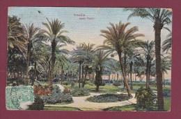 EGYPTE - 140813 - ISMAILIA - Jardin Public - Ismailia