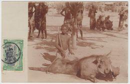 18844g CONGO BELGE - ETHNOGRAPHIQUE - Phacochère - Katanga  - 1909  - Carte Photo - Congo Belge - Autres