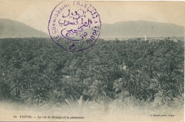 Figuig 34 Le Col De Zenaga Et Palmeraie Oasis Sahara Edit Geiser Cachet Franco Arabe - Algérie