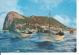 PENON DE GIBRALTAR - Sortie à La Pêche - Gibraltar