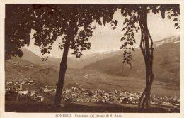 [DC8403] SONDRIO - PANORAMA DEI VIGNETI DI S. ANNA - Viaggiata - Old Postcard - Sondrio