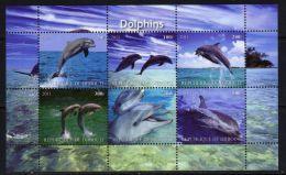 DJIBOUTI - KB V. 2011, Delfine (tie1418) - Dolphins