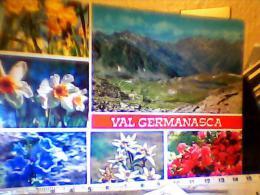 VAL GERMANASCA  VEDUTA  FIORI STELLE ALPINE VB1984  EG785 - Other Cities