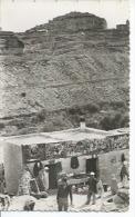 64 - CAFE ET MAGASIN DE TABERDGA ( Animées ) ALGERIE - Autres Villes