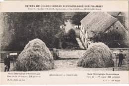 S97/ALS - CPA SAINTE-MARIE-AUX-MINES - Effets Du Chlorydrate D'Amoniaque Sur Prairies Chez M. Obliger, Agriculteur - Sainte-Marie-aux-Mines