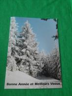 Carte  De Bonne  Année  Meilleurs Voeux Representant  Un Paysage D Hivers - Saisons & Fêtes