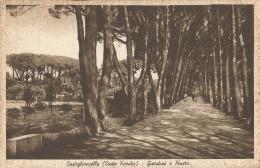 Italy, Castiglioncello, Giardini E Pineta. Ediz. Lucchesi Raffaelio E Figli. Tabaccheria N. 3. - Italia
