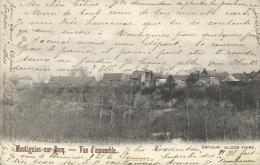 Montignies-sur-Rocq - Vue D'ensemble -1904 ( Voir Verso ) - Honnelles