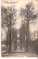 Ploërmel (Vannes-Morbihan)-1917-Ecole Lamenais (La Mennais)-L'allée Des Chênes-Écrite Par Un Militaire (voir Texte) - Ploërmel