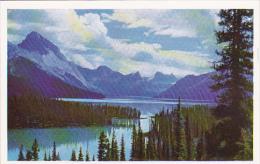 Maligne Lake Vista Jasper Alberta Canada