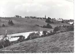 FROIDCHAPELLE: Panorama Et L'Etang - Froidchapelle