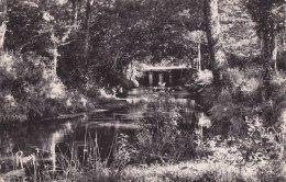 ¤¤  -  16  -  LE GAVRE  -  En Forêt  -  Les Arches De La Maillardais   -  ¤¤ - Le Gavre