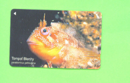 JERSEY - Magnetic Phonecard As Scan/Fish - Ver. Königreich
