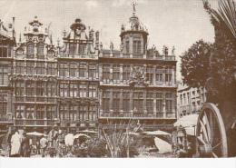"ADV: ""Dear Doctor"" PENTOTHAL Drug ; Grand Market , Brussels , Belgium , PU-1956 - Non Classés"