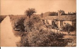 17 - Marans - Etude Du Marais - - Autres Communes